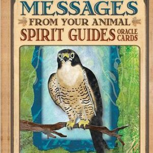 Messages from Your Animal Spirit Guides Oracle Cards Box Image